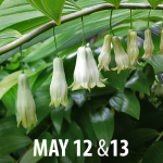 2018 Spring Plant Sale and Garden Open